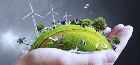 auge empleos ecologicos